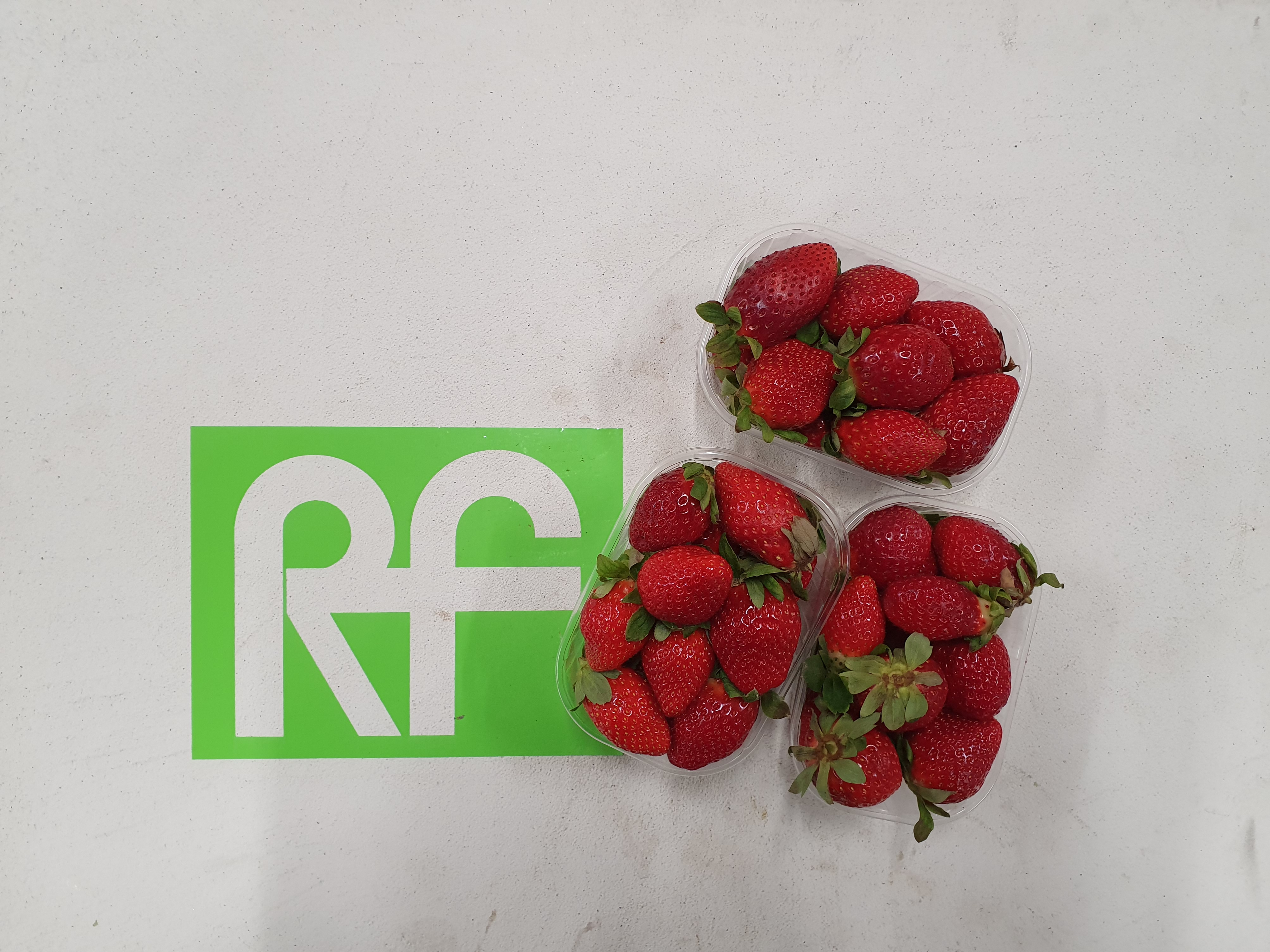 readyfrutta